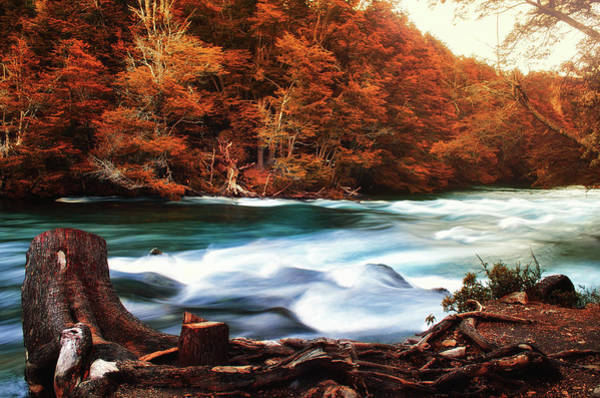 Photograph - Autumnal Landscape With Lake In The Argentine Patagonia by Fine Art Photography Prints By Eduardo Accorinti