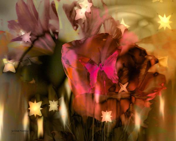 Photograph - Magical Wonderland by Gerlinde Keating - Galleria GK Keating Associates Inc