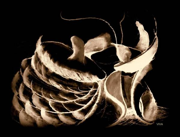 Drawing - Magicmushrooms Sepia by VIVA Anderson