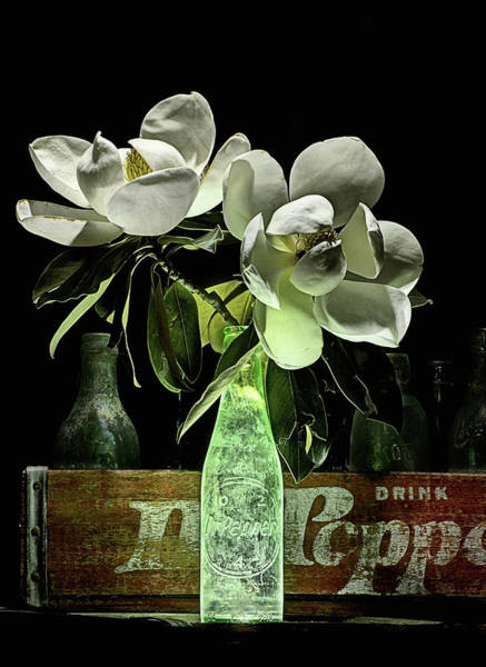 Photograph - Magnolia And Dr Pepper Bottle Still Life by JC Findley