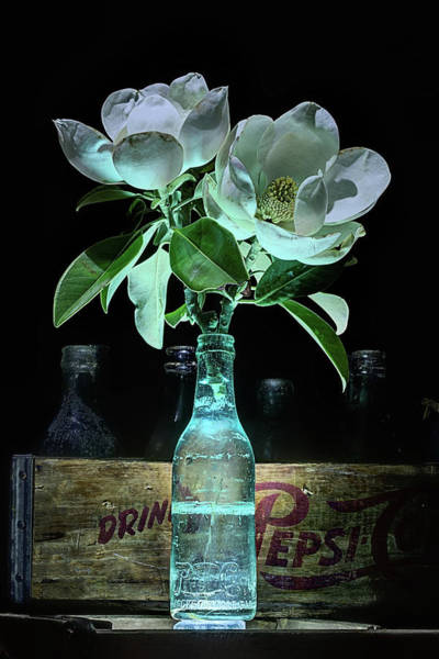 Photograph - Magnolia And Pepsi Still Life by JC Findley
