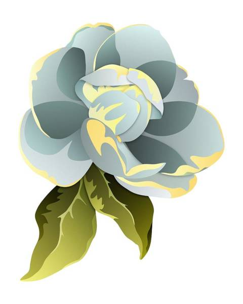 Digital Art - Magnolia Blossom Graphic by MM Anderson