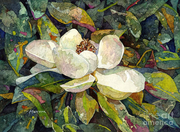 Wall Art - Painting - Magnolia Blossom by Hailey E Herrera