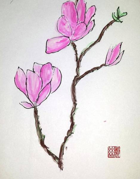 Painting - Magnolia Blossoms by Margaret Welsh Willowsilk