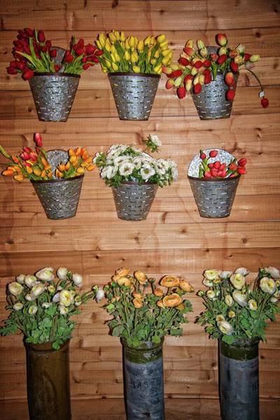 Photograph - Magnolia Market Flower Display by Lynn Bauer