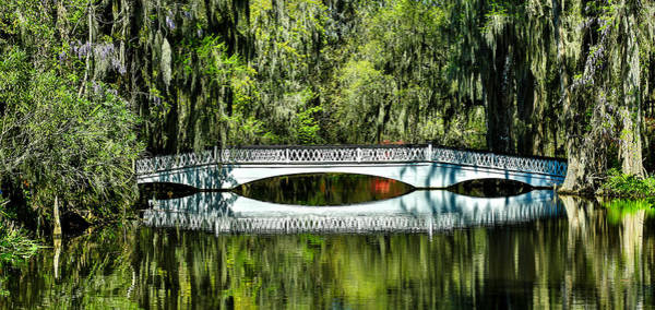 Magnolia Plantation Bridge - Charleston Sc Art Print