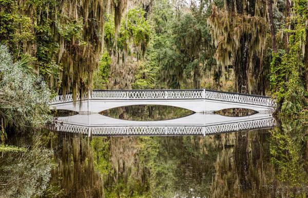 Magnolia Plantation Gardens Bridge Art Print