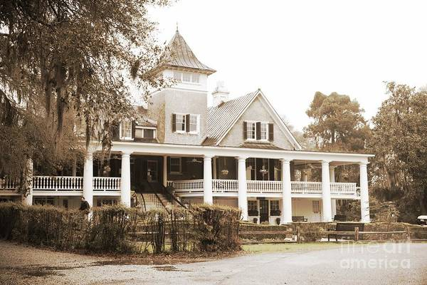 Photograph - Magnolia Plantation House In Sepia by Carol Groenen