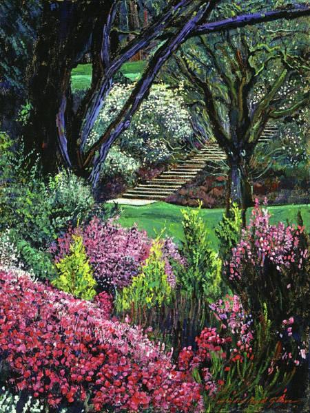Painting - Magnolias At Dartington Hall by David Lloyd Glover