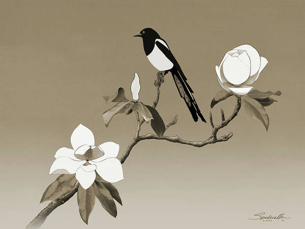 Wall Art - Digital Art - Magpie And White Magnolia by Spadecaller