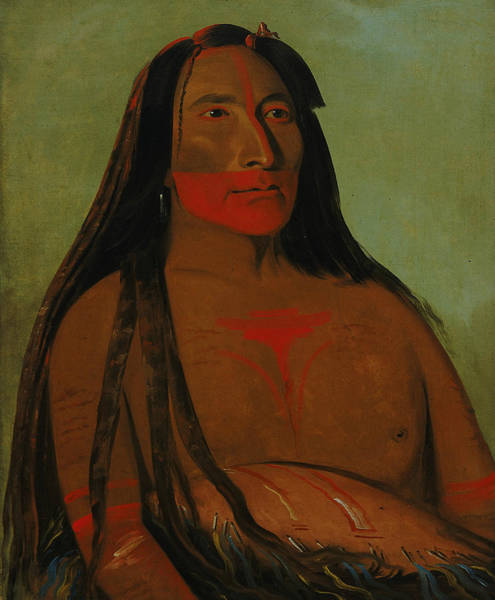 Painting - Mah-to-toh-pa, Four Bears, Second Chief In Mourning by George Catlin