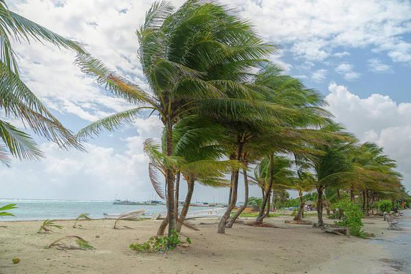 Photograph - Mahahual Beach by John M Bailey