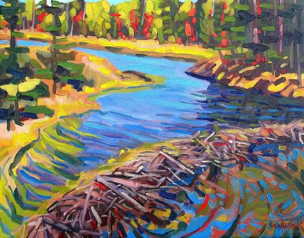 Wall Art - Painting - Mahzenazing Dam by Phil Chadwick