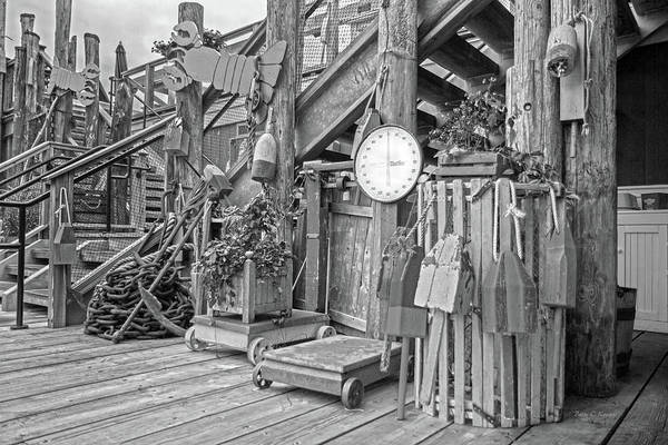 Wall Art - Photograph - Maine Attraction Bw by Betsy Knapp