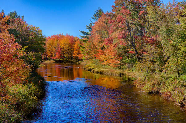 Maine Brook In Afternoon With Fall Color Reflection Art Print