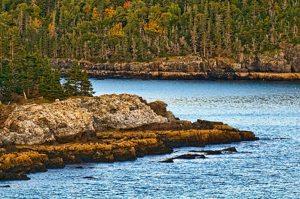 Photograph - Maine Coastline by Ginger Wakem