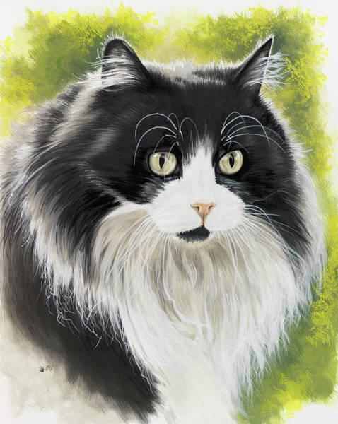 Painting - Maine Coon In Watercolor by Barbara Keith