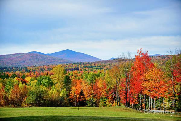 Photograph - Maine Fall by Alana Ranney