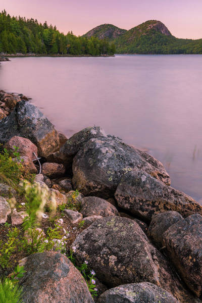 Photograph - Maine Jordan Pond Bubble Mountain Sunset In Acadia National Park by Ranjay Mitra