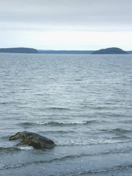 Oceanfront Photograph - Maine Ocean by Cat Rondeau
