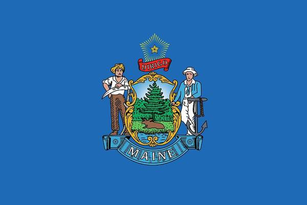 Painting - Maine State Flag by American School