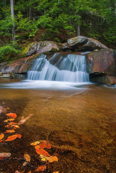 Photograph - Maine Upper Screw Auger Falls And Fall Foliage by Ranjay Mitra