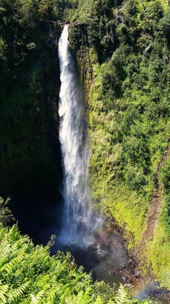 Photograph - Majestic Akaka Falls by Pamela Walton