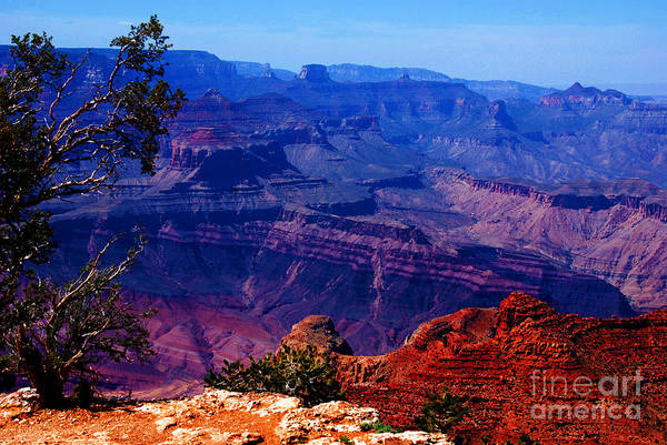Wall Art - Photograph - Majestic Grand Canyon by Susanne Van Hulst