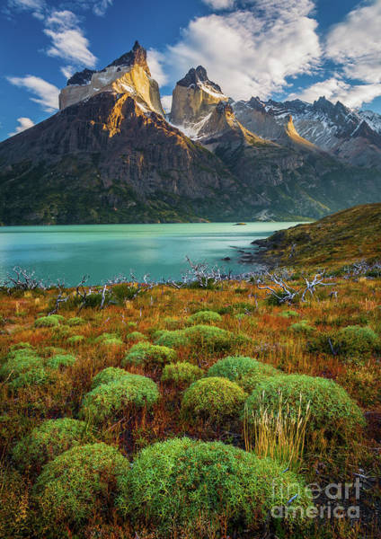 In Law Photograph - Majestic Los Cuernos by Inge Johnsson
