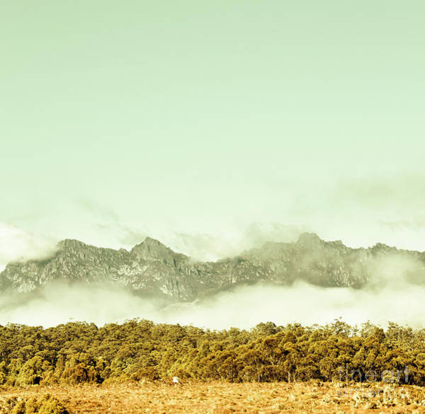 Forestry Photograph - Majestic Misty Mountains by Jorgo Photography - Wall Art Gallery