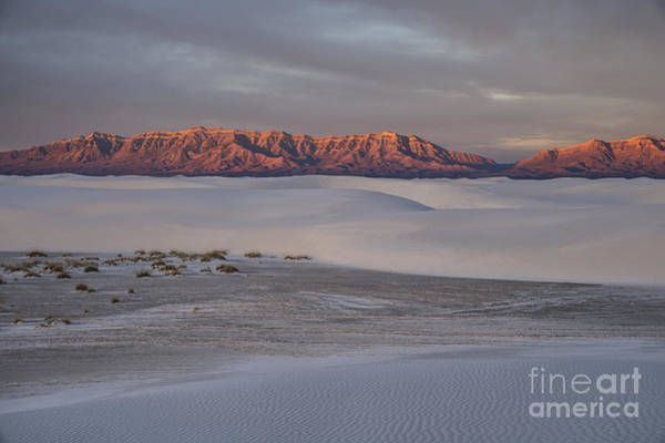 Wall Art - Photograph - Majestic Morning - White Sands by Sandra Bronstein