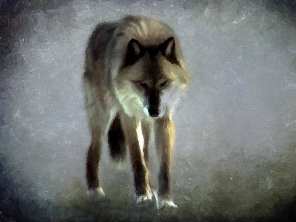 Photograph - Majestic Wolf by David Dehner