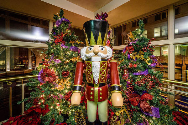 Photograph - Major Nutcracker by Randy Scherkenbach