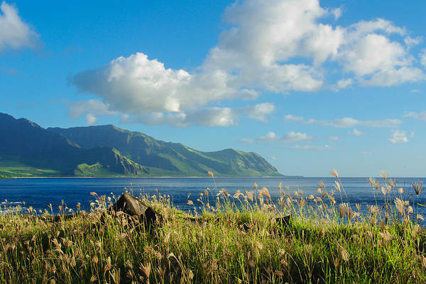 Kaena Photograph - Makaha Point by Megan Martens