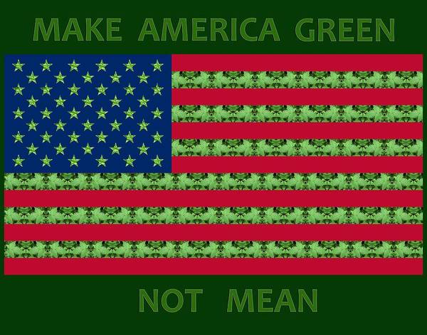 Digital Art - Make America Green Not Mean Usa Flag by Julia L Wright