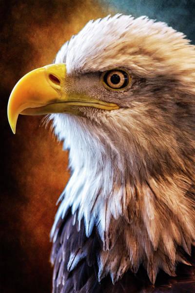 Wall Art - Photograph - Make America Proud Again by Bill Tiepelman
