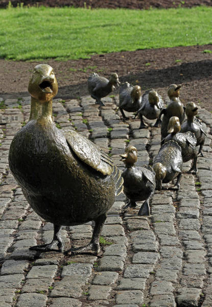 Photograph - Make Way For Ducklings Bronze Statue by Juergen Roth