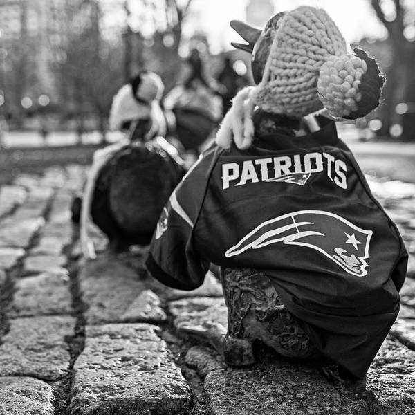Photograph - Make Way For Ducklings Supporting The Patriots- Boston Public Garden Boston Ma Black And White by Toby McGuire