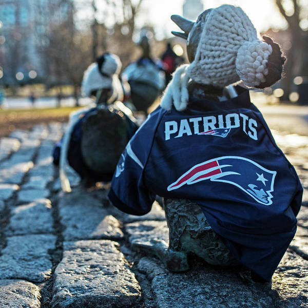 Photograph - Make Way For Ducklings Supporting The Patriots- Boston Public Garden Boston Ma by Toby McGuire