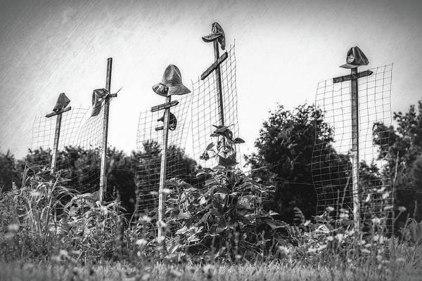 Wall Art - Photograph - Makeshift Scarecrows by Tom Mc Nemar