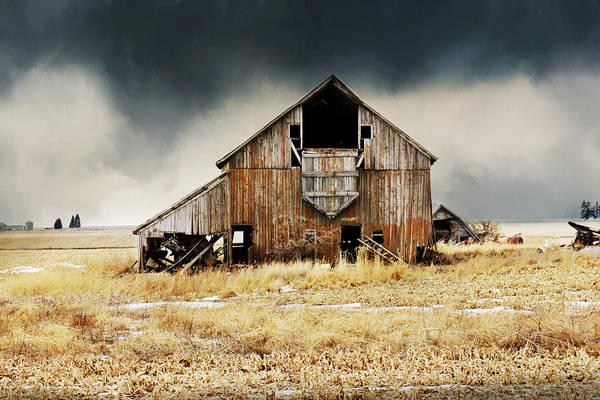 Photograph - Making History by Julie Hamilton