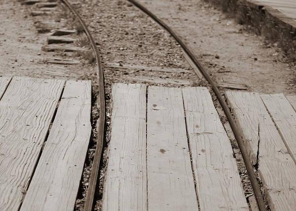 Photograph - Making Tracks 2 by Colleen Cornelius