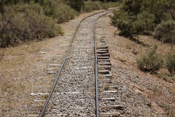 Photograph - Making Tracks by Colleen Cornelius