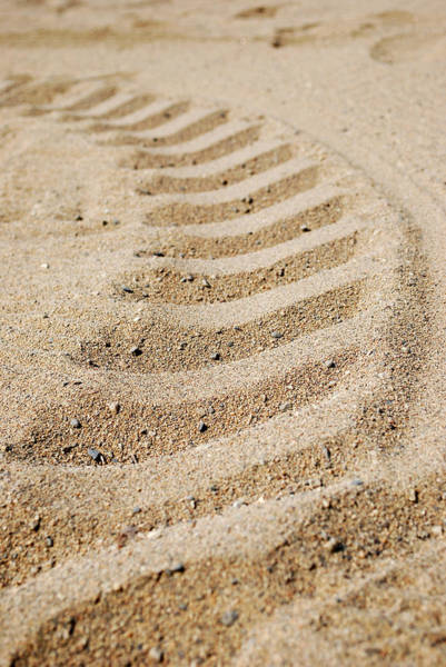 Kelowna Wall Art - Photograph - Making Tracks by Lisa Knechtel