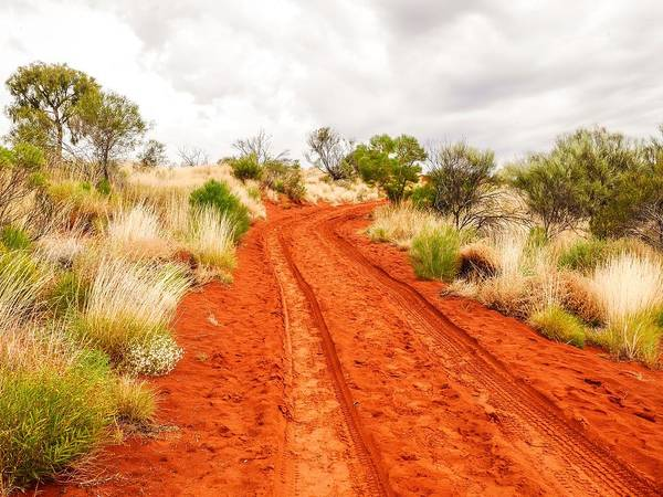 Photograph - Making Tracks - Red Centre, Australia by Lexa Harpell