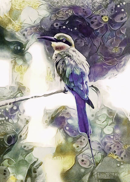 Mixed Media - Malaysian Blue-tailed Bee-eater by Susan Maxwell Schmidt