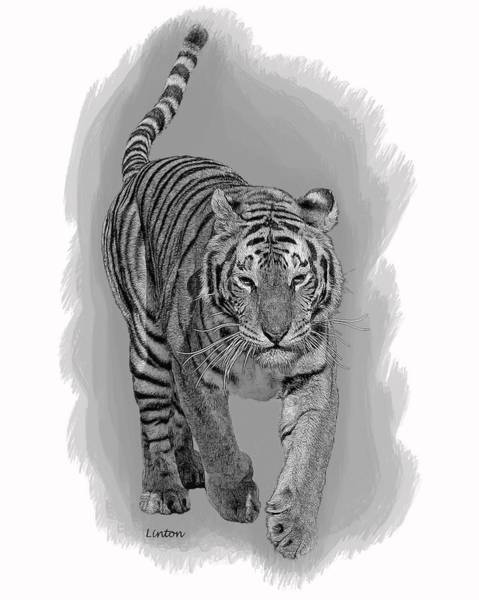 Digital Art - Malaysian Tiger by Larry Linton