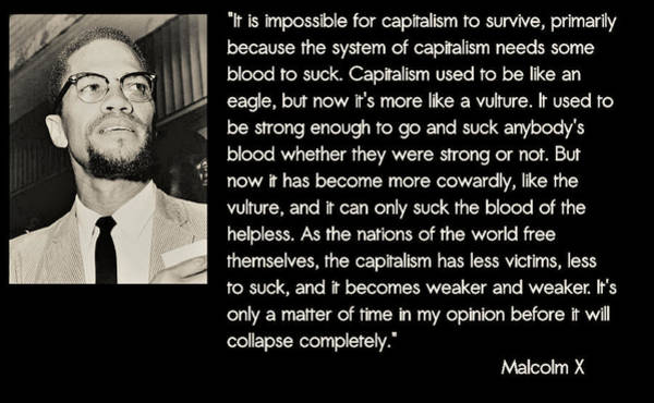 Malcolm X  On Capitalism And Vultures Art Print