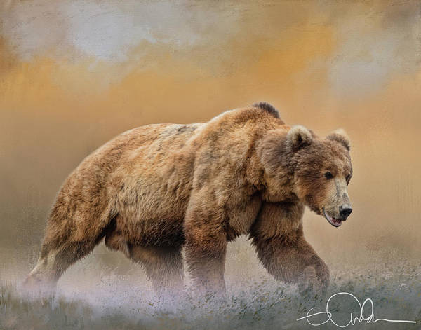 Digital Art - Male Brown Bear by Gloria Anderson