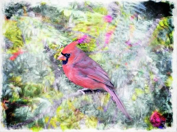 Digital Art - Male Cardinal Art by Rusty R Smith